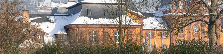 slider_0000s_0002_Schlossmauer